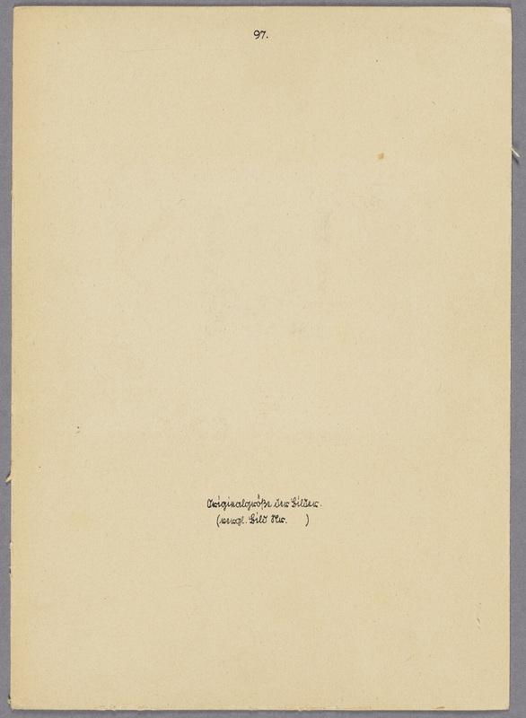 Originalgröße der Fotos, verso