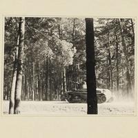 Ein deutscher Panzer im Wald